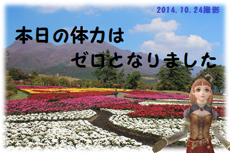 20141024花公園