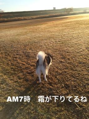 IMG_0274_Fotor.jpg