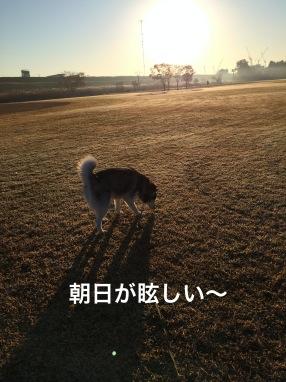 IMG_0275_Fotor.jpg