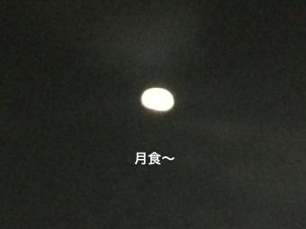 IMG_1355_Fotor.jpg