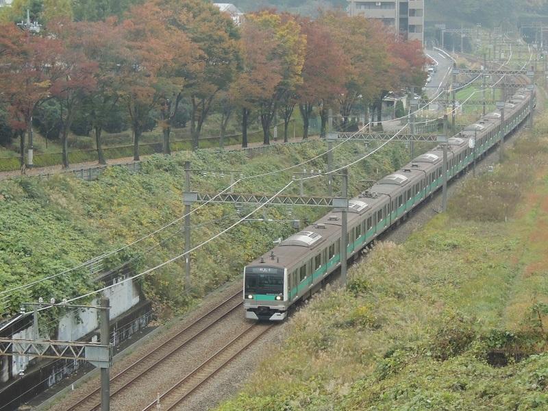 DSCN4280.jpg