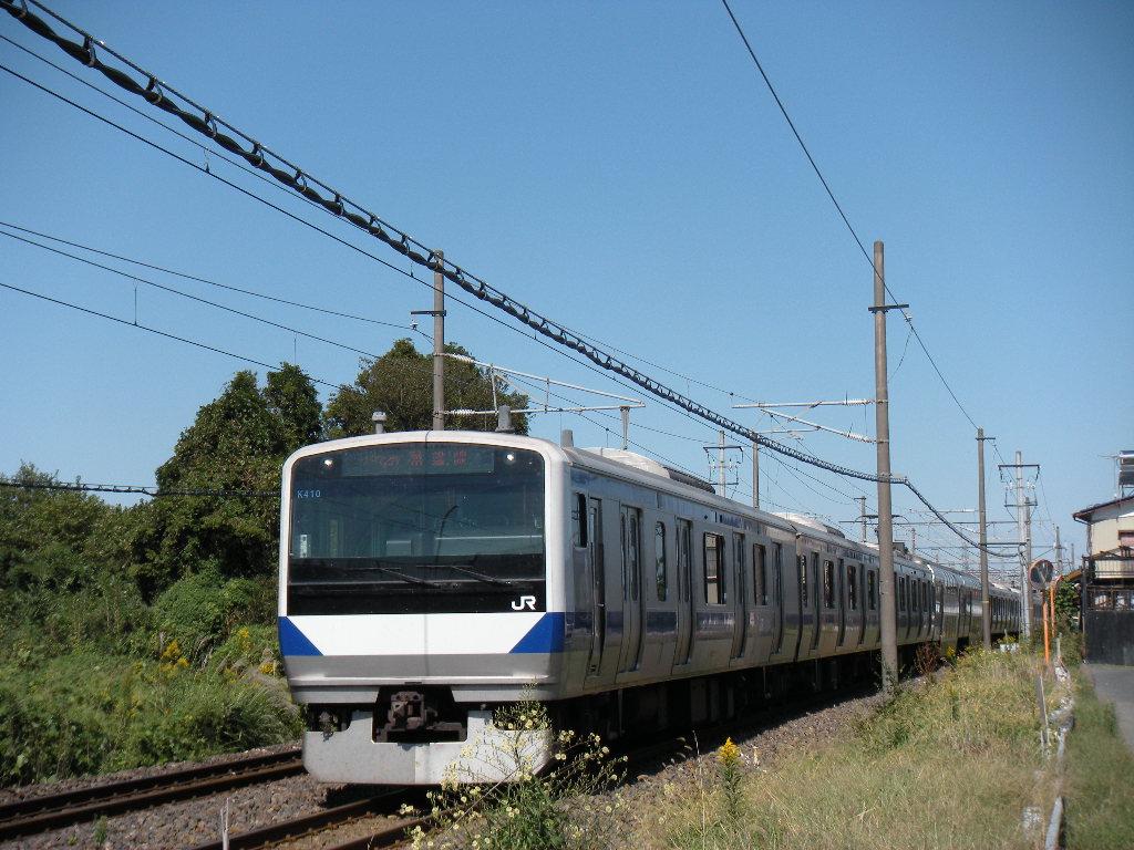 DSCN5256.jpg