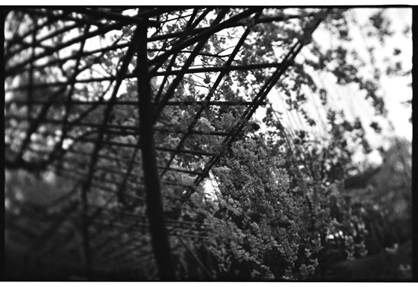 yuigon_201310_3.jpg