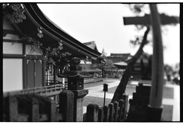 yuigon_201310_3_3.jpg