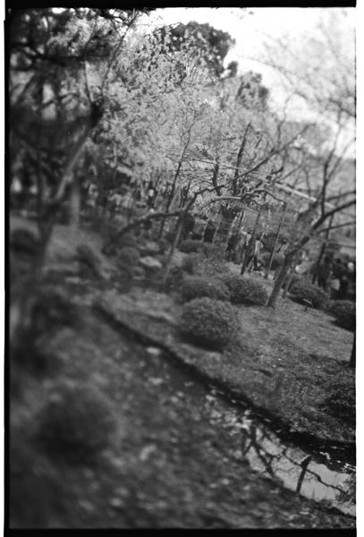 yuigon_201310_3_5.jpg