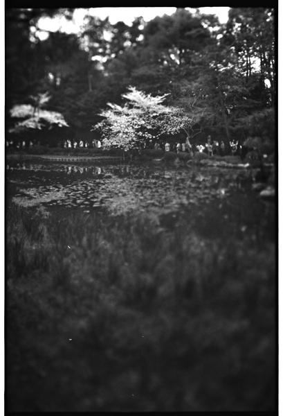 yuigon_201310_4.jpg