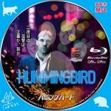 ハミングバード_bd_03【原題】 Hummingbird