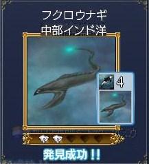 海洋生物ーフクロウナギ