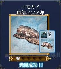 海洋生物ーイモガイ
