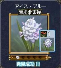 植物ーアイス・ブルー