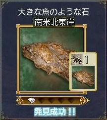 化石ー大きな魚のような石