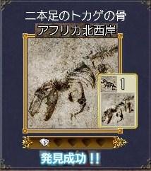 化石ー二本足のトカゲの骨