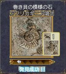 化石ー巻き貝の模様の石