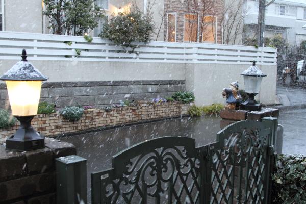 IMG_9926初雪初雪