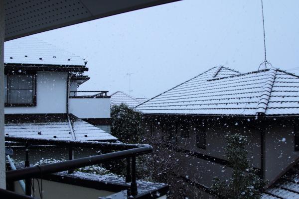 IMG_9940初雪初雪