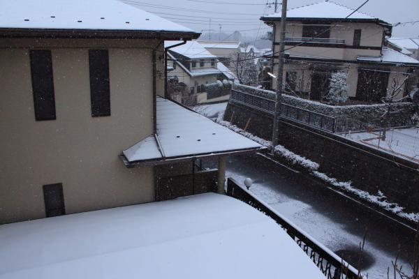 IMG_3142大雪大雪