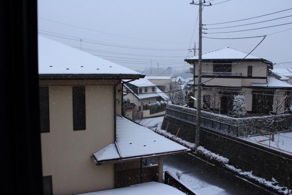 IMG_3140大雪大雪