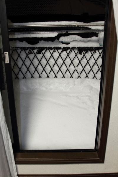IMG_0180大雪 夜大雪 翌日
