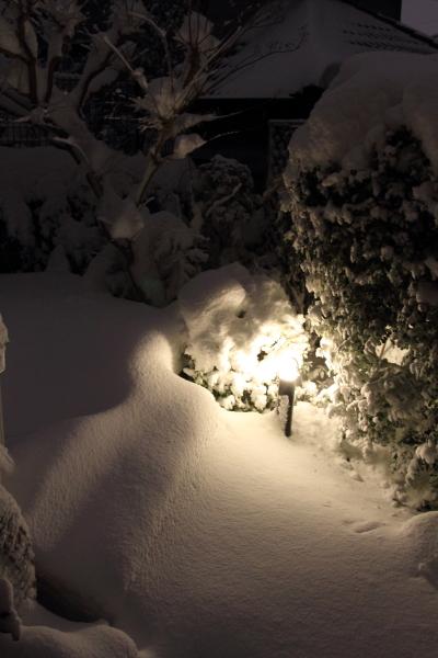 IMG_0193大雪 夜大雪 翌日