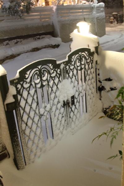 IMG_0195大雪 夜大雪 翌日