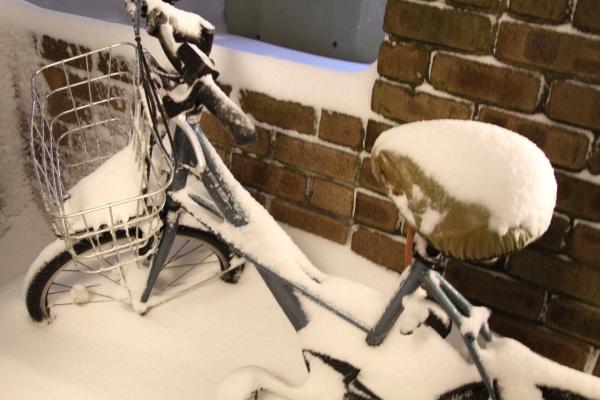 IMG_0196大雪 夜大雪 翌日