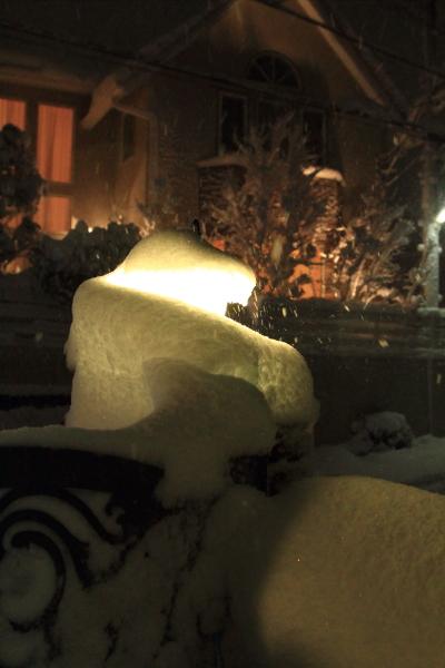 IMG_0224また大雪また大雪