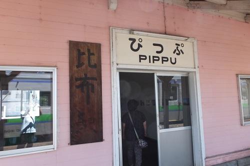 pip10.jpg