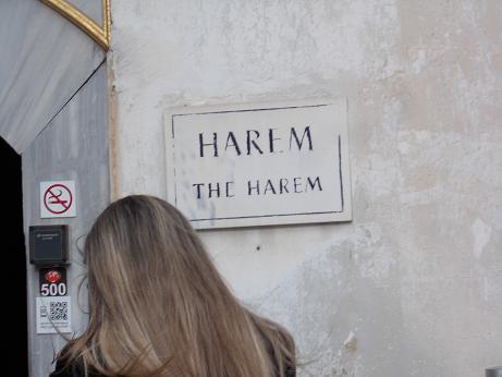 1147 - ハーレム2