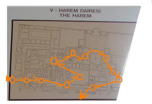1ハーレム図
