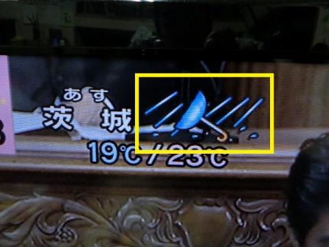 2013101601.jpg
