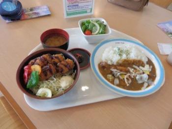 10/19 昼食 カキフライ丼、秋野菜のカレー  はままつフラワーパーク