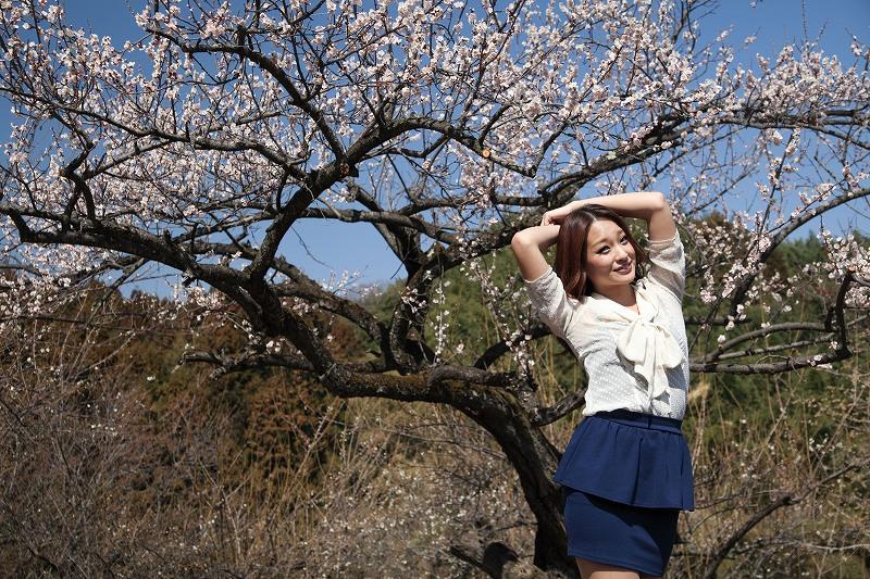 春_4956