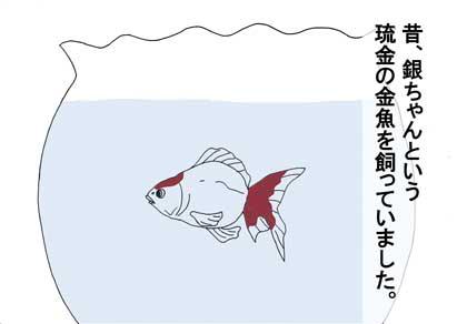 銀ちゃん1
