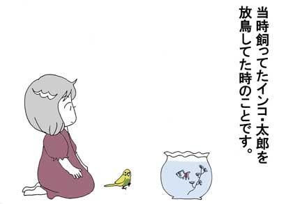 銀ちゃん2