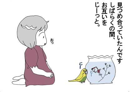 銀ちゃん3
