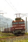 DPP_0123.jpg