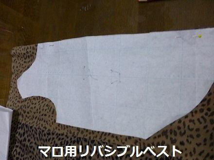P1020319.jpg