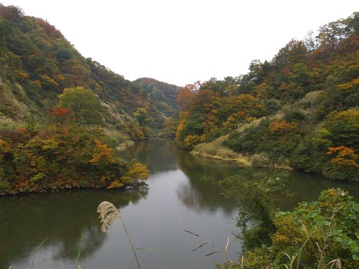 ダム湖にて
