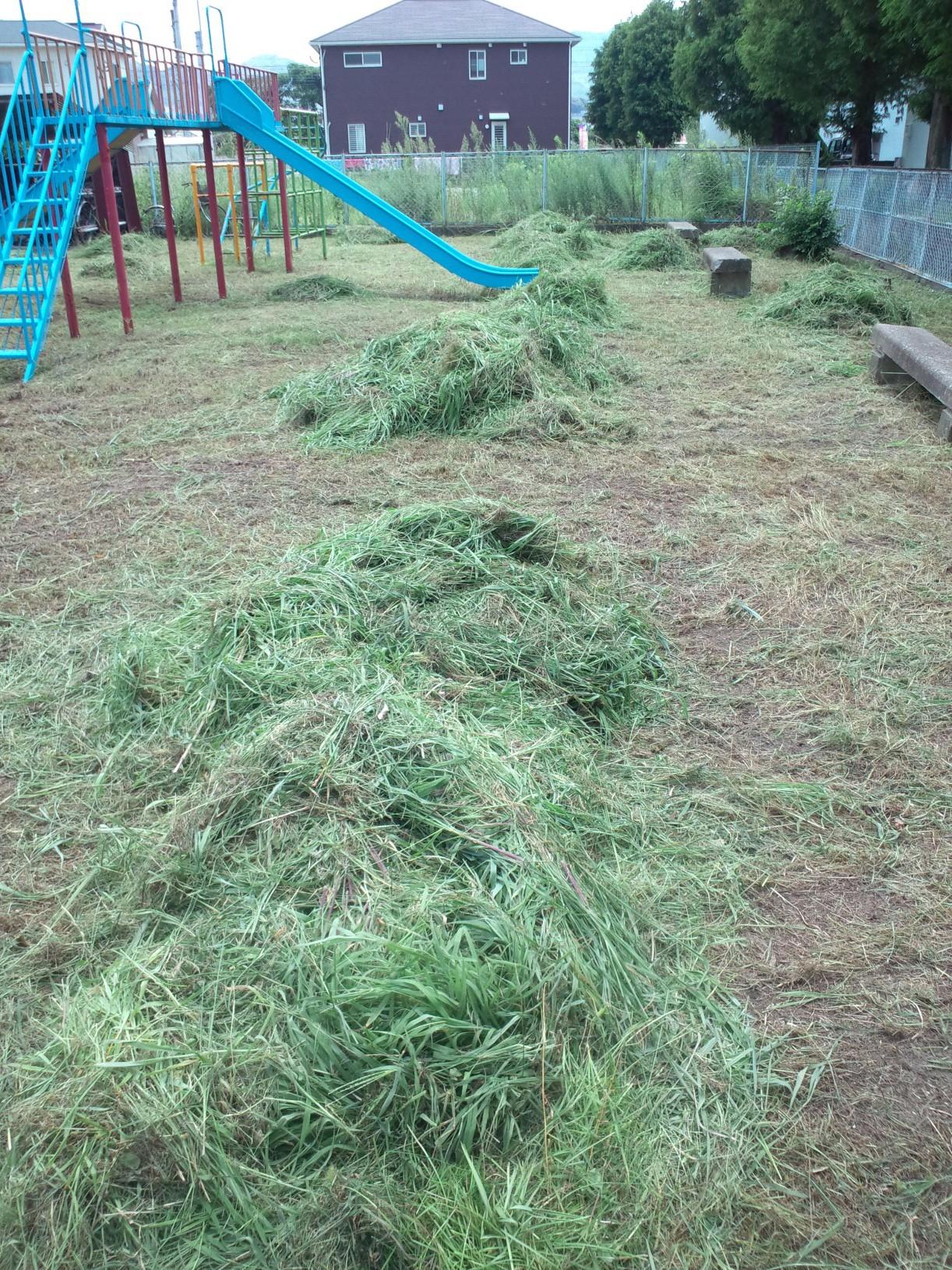 福岡 草刈り
