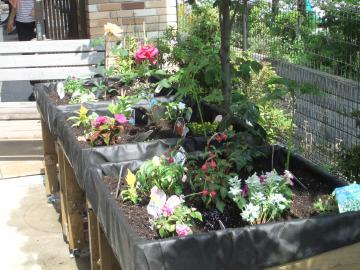 園芸用ブログ3
