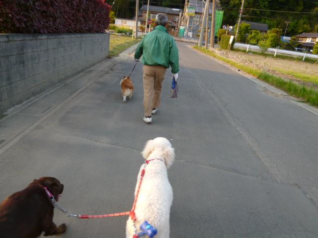 散歩のあ 002