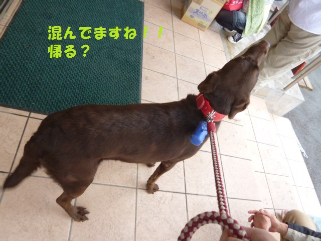 病院~梅~一人散歩~洋服 006
