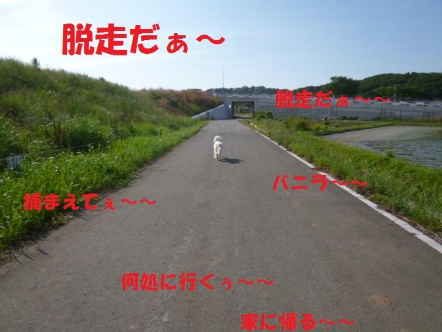 病院~梅~一人散歩~洋服 057