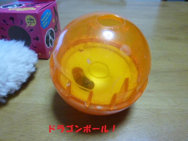 ボール遊び~破壊王 027