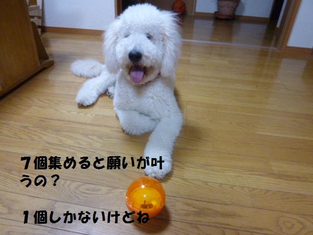 ボール遊び~破壊王 038