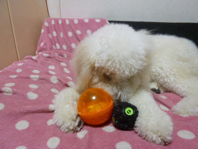 ボール遊び~破壊王 042