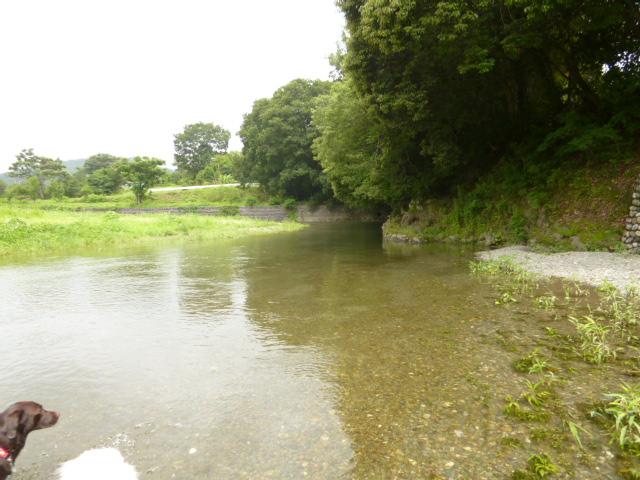 川遊び 010