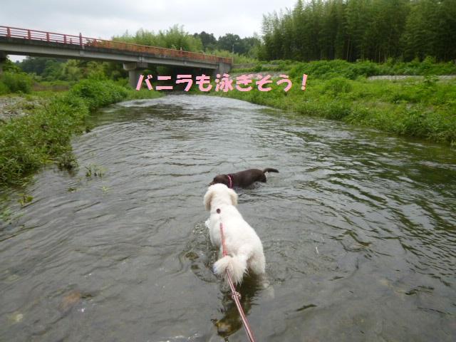 川遊び 006