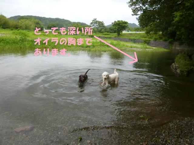 川遊び 020
