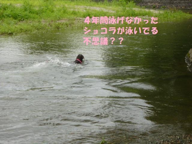 川遊び 031